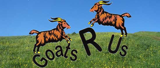 R Goats Goats R Us is a family owned